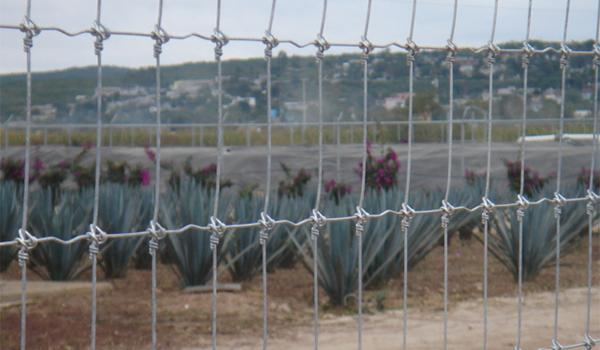 Triple knot fence